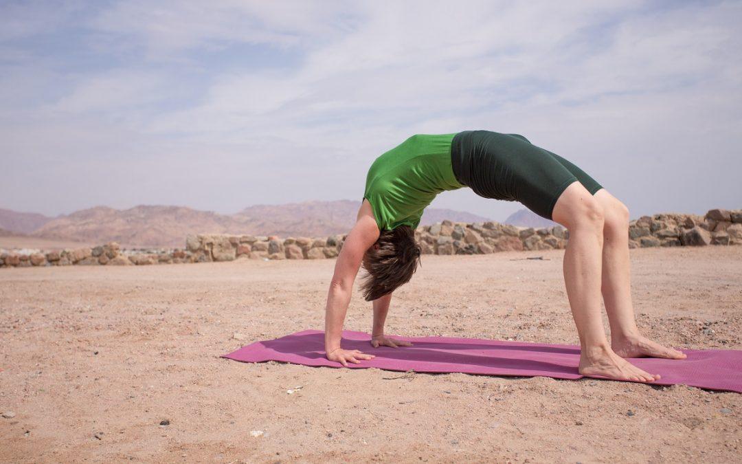 YOGA für Geübte und Yogalehrer